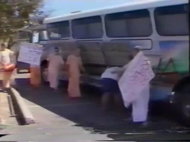 Hare Krishna's Release 100 Pidgins in a Car Park